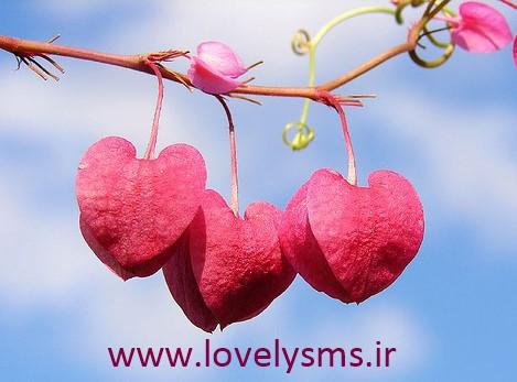 love2 1 اس ام اس عاشقانه نوروز سری 5